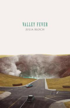 book cover, Valley Fever by Julia Bloch